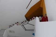 Torino, Museo Fico
